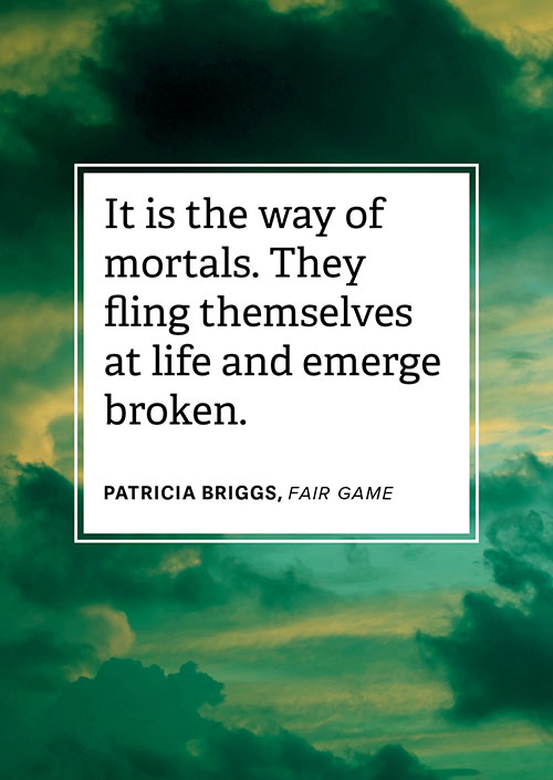 #LoveRomance – Fair Game by Patricia Briggs, women fighting for their happy ending