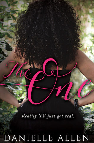 The One by Danielle Allen