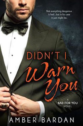 Didn't I Warn You by Amber Bardan (Bad For You, #1)