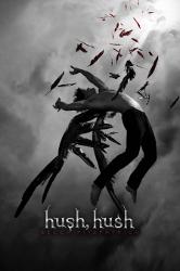 Hush, Hush by Becca Fitzpatrick (Hush, Hush Saga, Book 1) - C format
